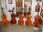 violini, violoncelli , viole