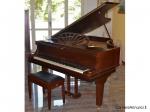 Pianoforte a coda, (160x150cm) Allison L