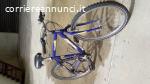 bicicletta montanbike nuzzi
