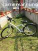 Bicicletta Unisex