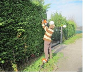 Giardinaggio, sfalci e potatura