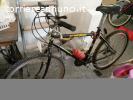 Mountain bike Legnano e Vicini