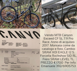 Mtb 29 Canyon exceed CF SL 7.9 pro Race