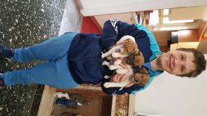 Regalo  cuccioli