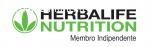 ricerca urgente distributori indipendenti Herbalife