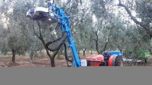 Scuotitore per raccolta olive