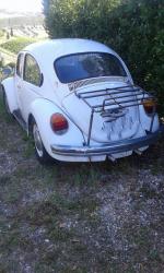 Volkswagen Maggiolino